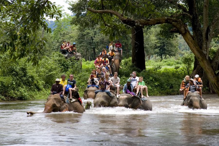 Elephant-Trekking-Tour_2-Kanchanaburi
