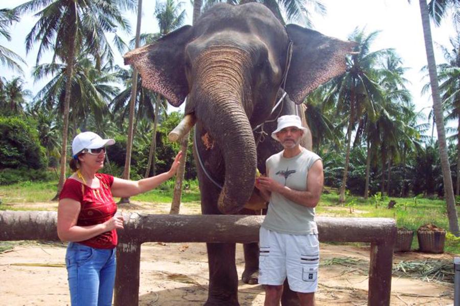старик со слоном