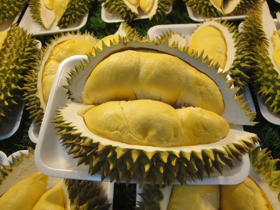 http://asiamir.com/wp-content/uploads/2013/09/king_of_fruit_by_gupa507-d54e7je-e1378467920510.jpg