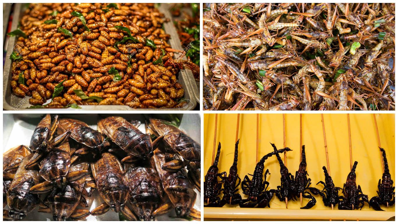 Жаренные насекомые
